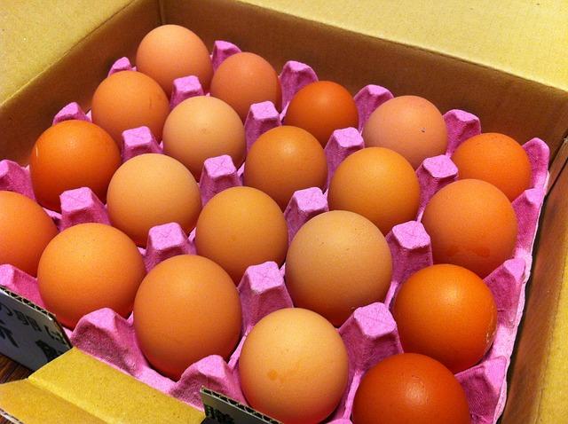 egg-carton-67124_640