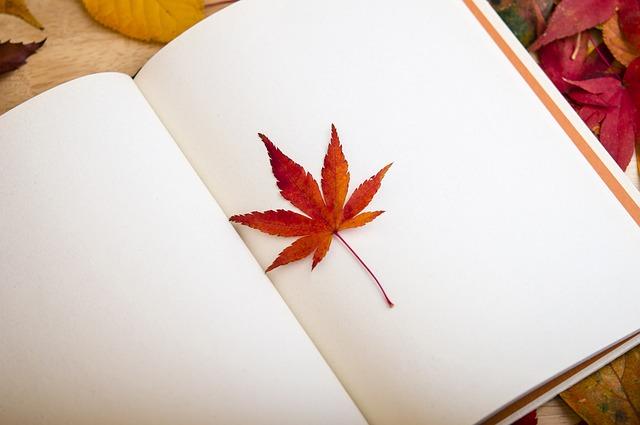 maple-leaf-638022_640