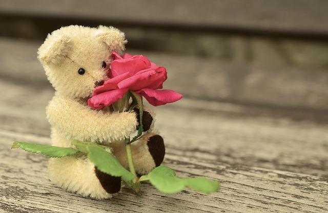 teddy-889892_640