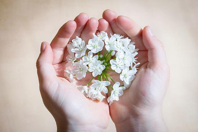flower-1307578_640