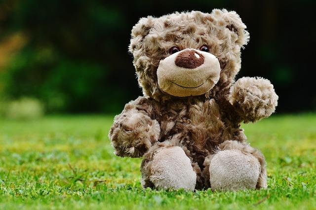 teddy-1338895_640
