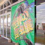 【夏休み限定】トリアス世界の昆虫展に行ってきた。施設の全貌とふれあい動物園とのセット入場がお得というお話。