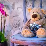 発達障害児の記念撮影を成功させるコツ5つ。次男の誕生日と七五三の写真をスタジオアリスで撮ってきました。