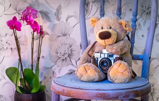 teddy-bear-1710641_640